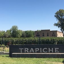 Finca Los Arboles – un terroir remarquable dans la vallée de l'Uco
